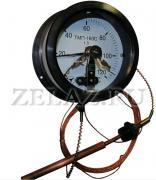 Термометры ТМП-160С - фото